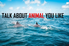 IELTS SPEAKING PART 2: TALK ABOUT ANIMAL  YOU LIKE