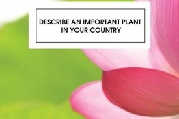 IELTS SPEAKING PART 2 : DESCRIBE AN IMPORTANT PLANT IN YOUR COUNTRY
