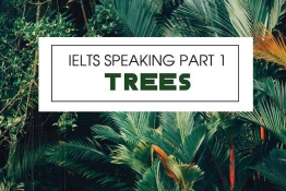 IELTS SPEAKING PART 1: Let's talk about TREES