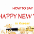 How to say HAPPY NEW YEAR in KOREAN