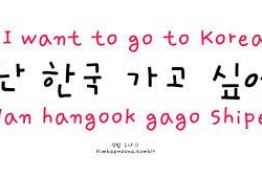 How to say I WANT TO GO TO KOREA in Korean? :3